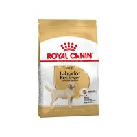 royal-canin-labrador-retriever-adult-3kg