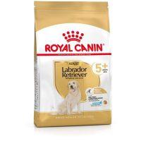 royal-canin-labrador-retriever-adult-5-12kg