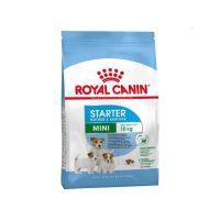 royal-canin-mini-starter-1kg