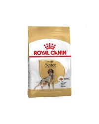 royal-canin-setter-adult-12kg